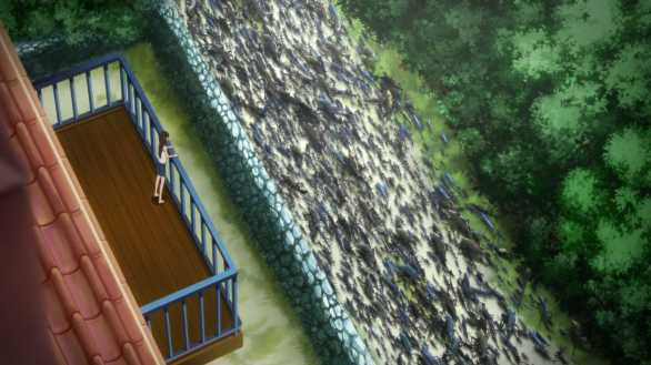 The Walking Fish Invasion