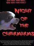 nightofthechihuahua
