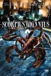 scorpiusgigantus