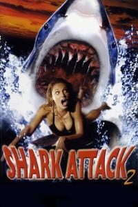 sharkattack2
