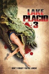 lakeplacid3